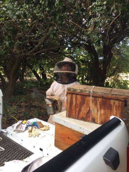 Raw honey from our own beehives in Port Elizabeth and surrounding areas.